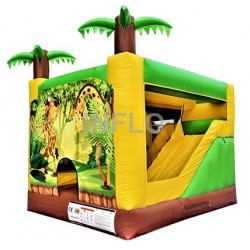 Inflatable bouncer IF-2002